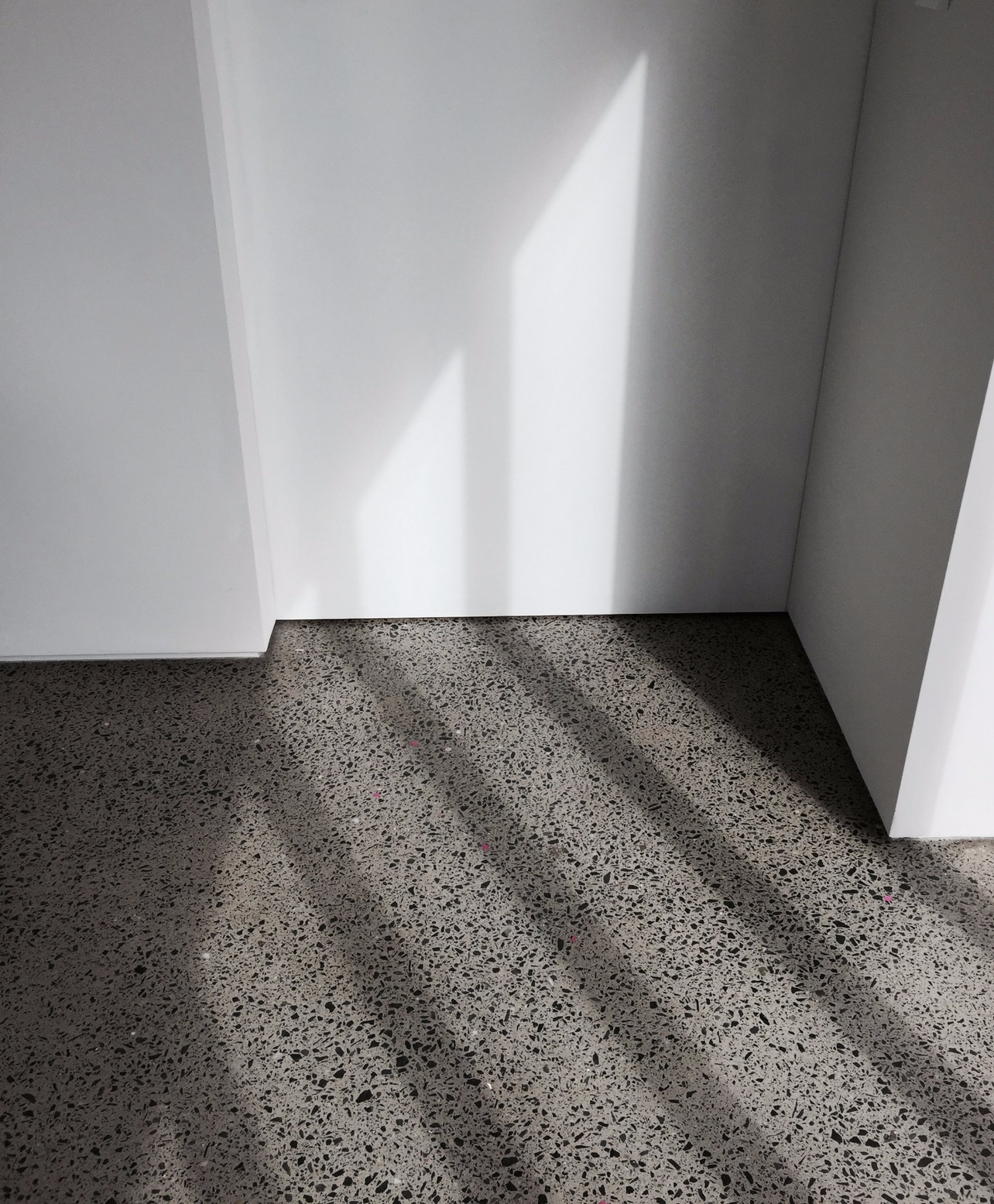 Polished Concrete with BGA Architects